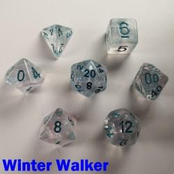 Iridescent Glitter Winter Walker